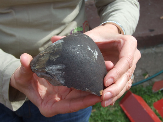 The Soltmany meteorite