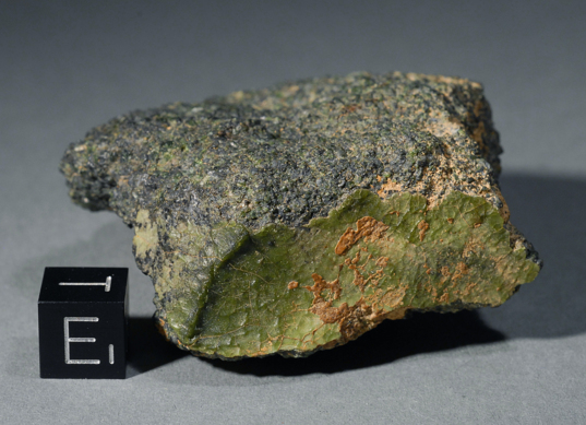 NWA 7325, a unique meteorite
