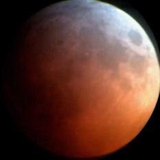 Lunar eclipse via iPhone behind a telescope