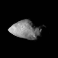Asteroid Annefrank