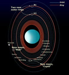 Orbits of Uranus' rings and moons