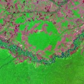 False color Landsat 5 image used by Max Rocca, supported by The Planetary Society, to discover the Rio Vichada Impact Structure, which, though still awaiting final confirmation, appears to be the largest impact structure in South America with an outer ring at 50 km and an inner ring at 30 km diameter.  Note the course of the Rio Vichada river in the image which flows around the highly circular structure in the center.