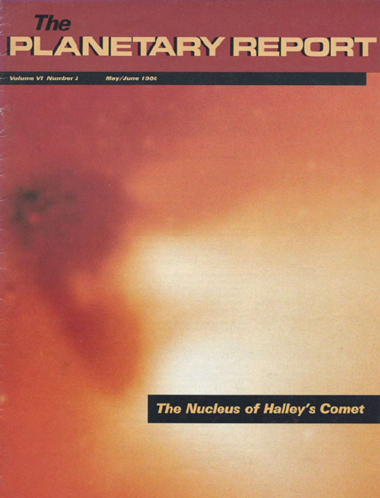 The Nucleus of Halley's Comet