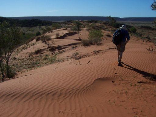 Australia's linear dunes