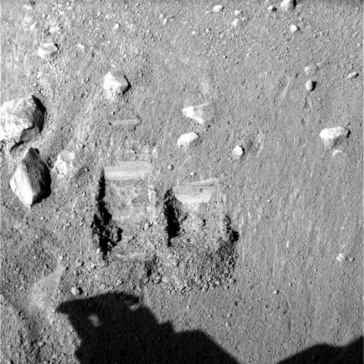 Dodo and Baby Bear trenches, Phoenix sol 11
