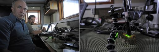 Contact Raman Spectrometer