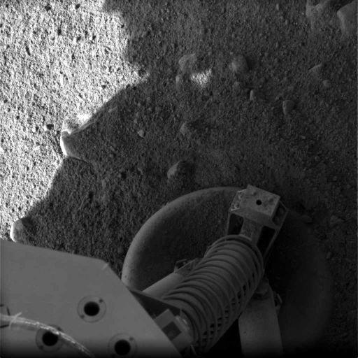 Footpad on soil at Phoenix landing site