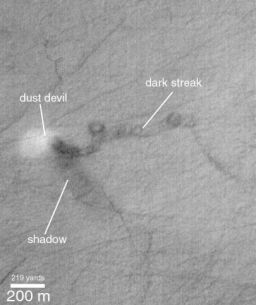 The 'smoking gun' dust devil