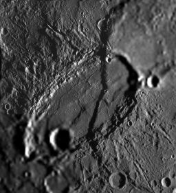Beagle Rupes, Mercury