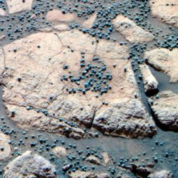 The 'berry bowl' at Opportunity's landing site