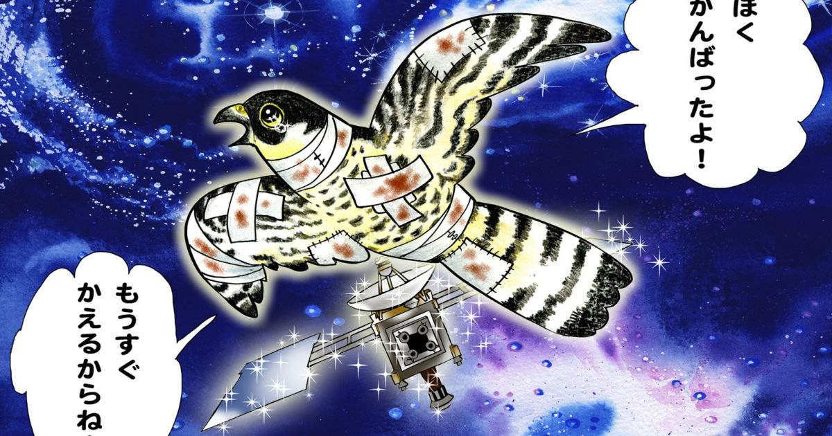 Hayabusa Peregrine Falcon The Planetary Society
